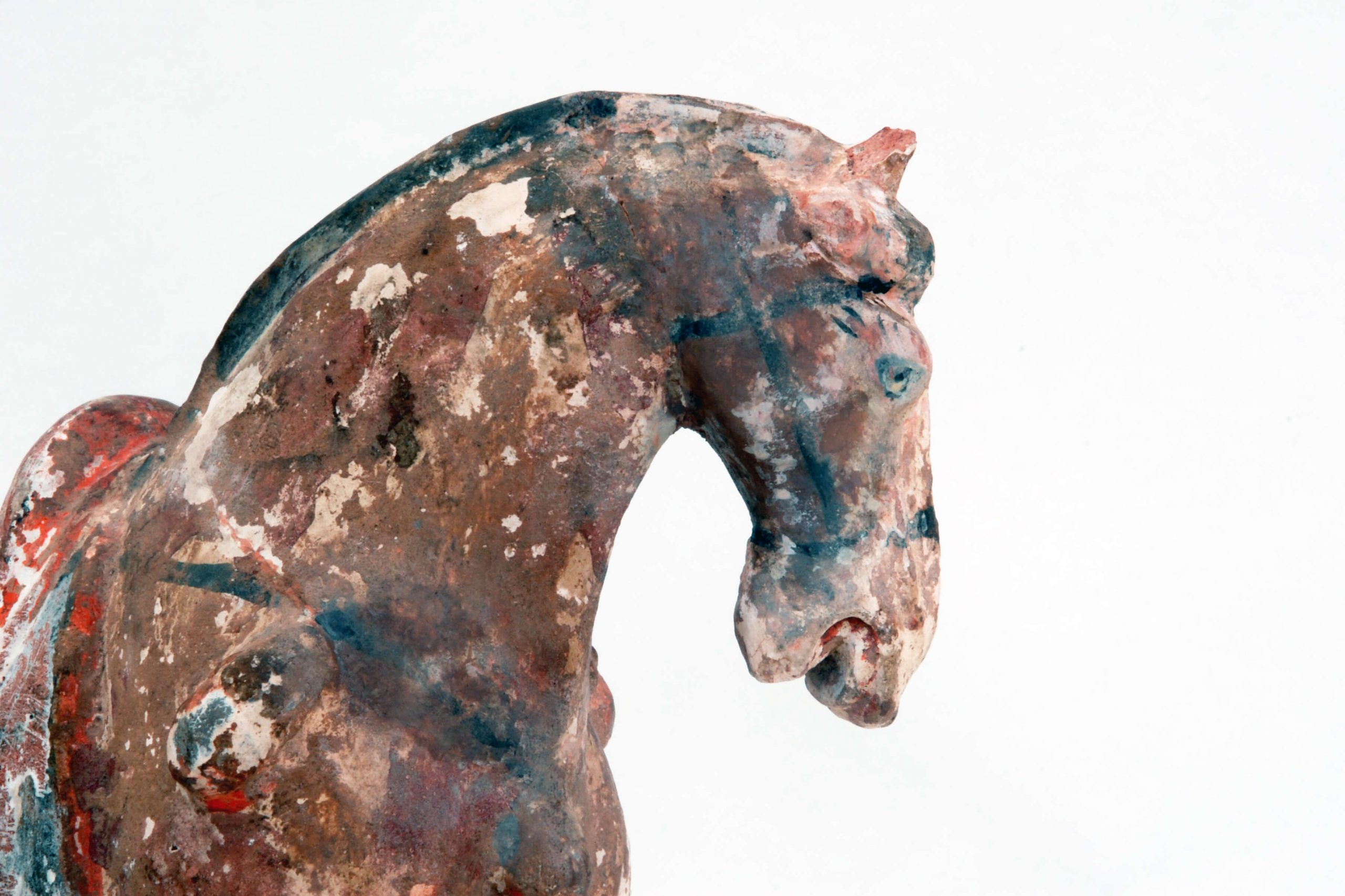 Tchangský osedlaný kůň